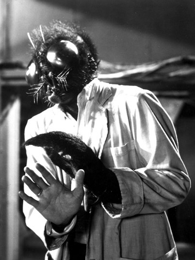 The Fly,